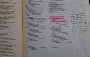 zephaniah-3-17
