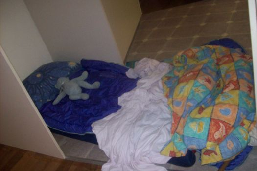 bed in fridge alcove