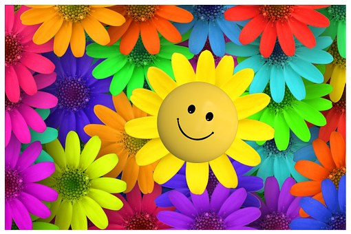 smiley face flower surrounded by colourful flowers